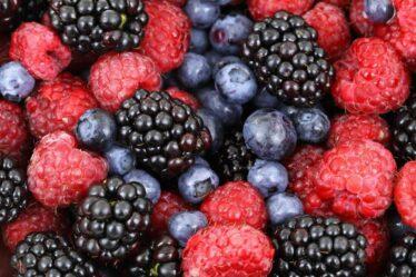 Eten om je weerstand te verhogen