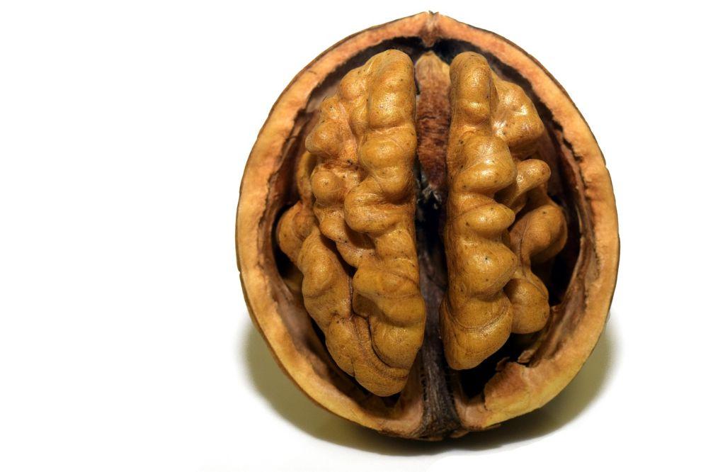 Leuke oefeningen om je geheugen te traine